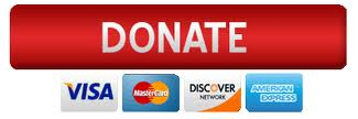 Donate button (Red with credit cards)